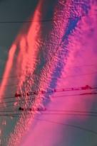 the winner's photographic solar panel